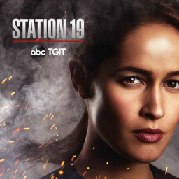 Tv Shows You Would Like to Watch If You Like Station 19 (2018)